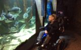 Kingfisher class Visit Sea Life Centre